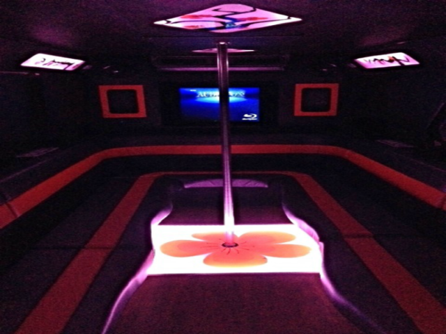 21 Passenger Party Bus