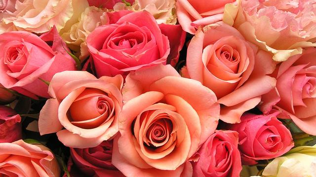 Dallas Wedding Florist Advice
